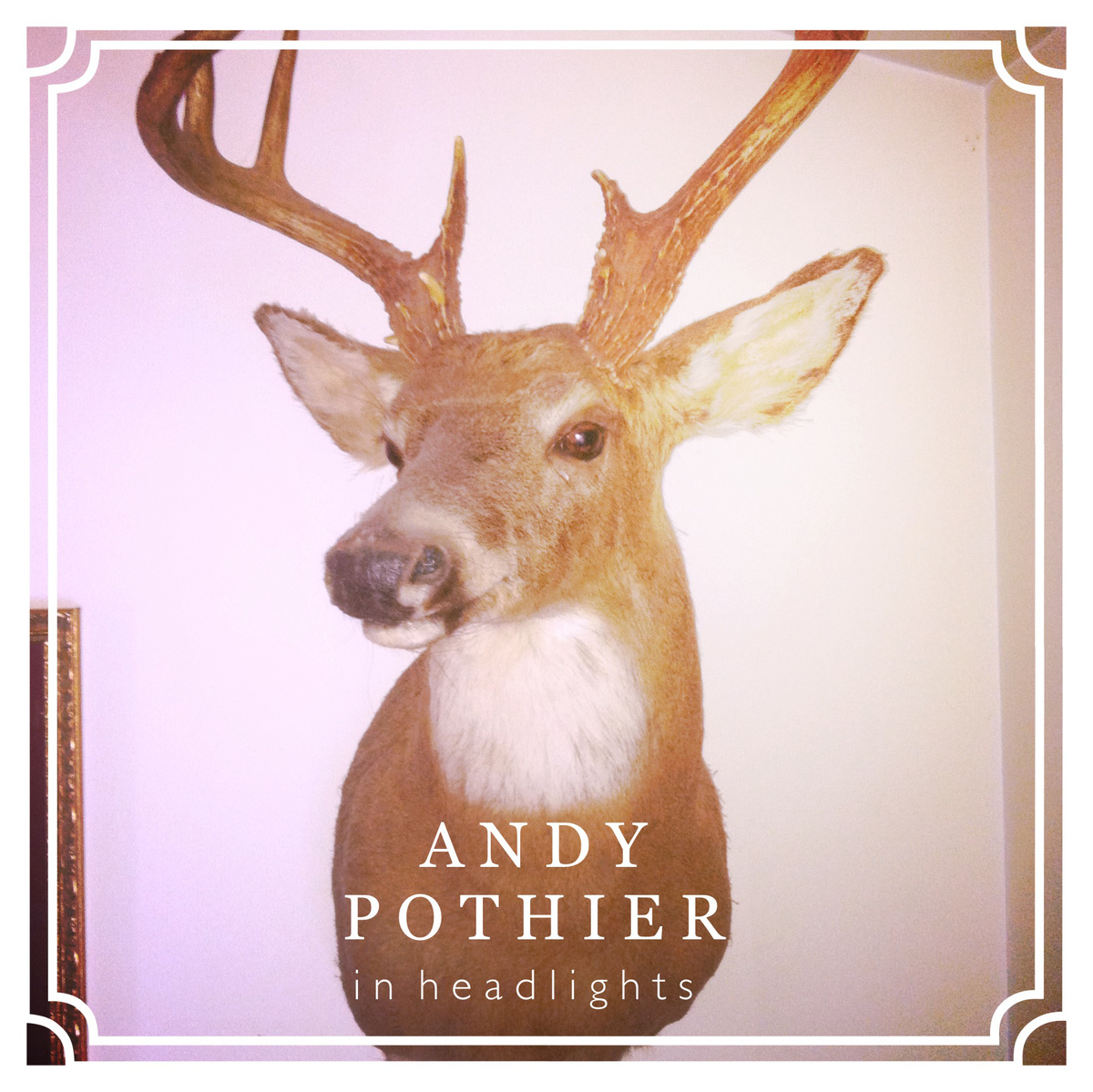 Andy Pothier – In Headlights