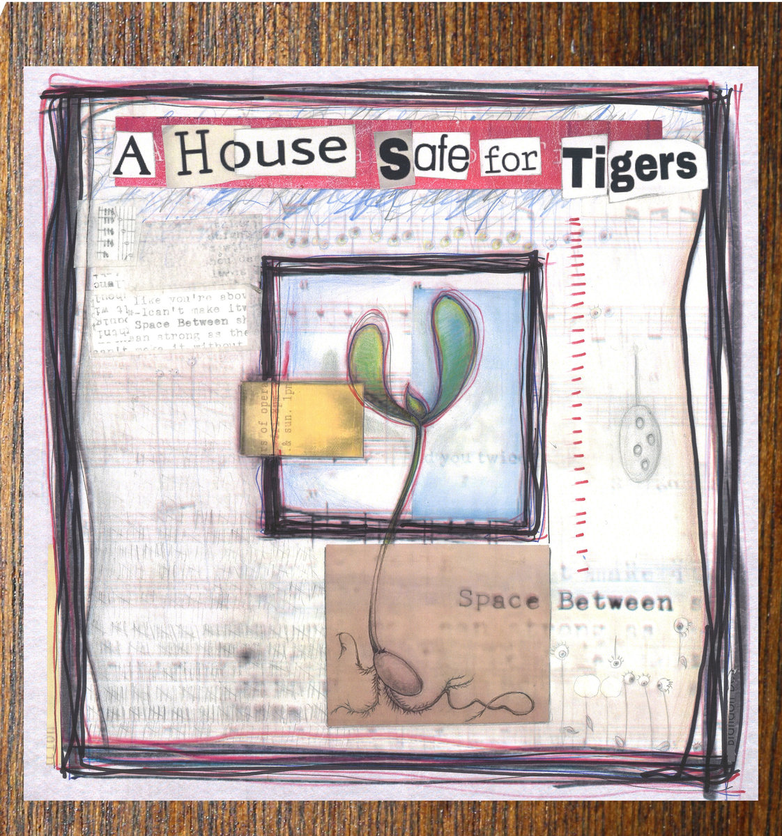 A House Safe for Tigers – Space Between