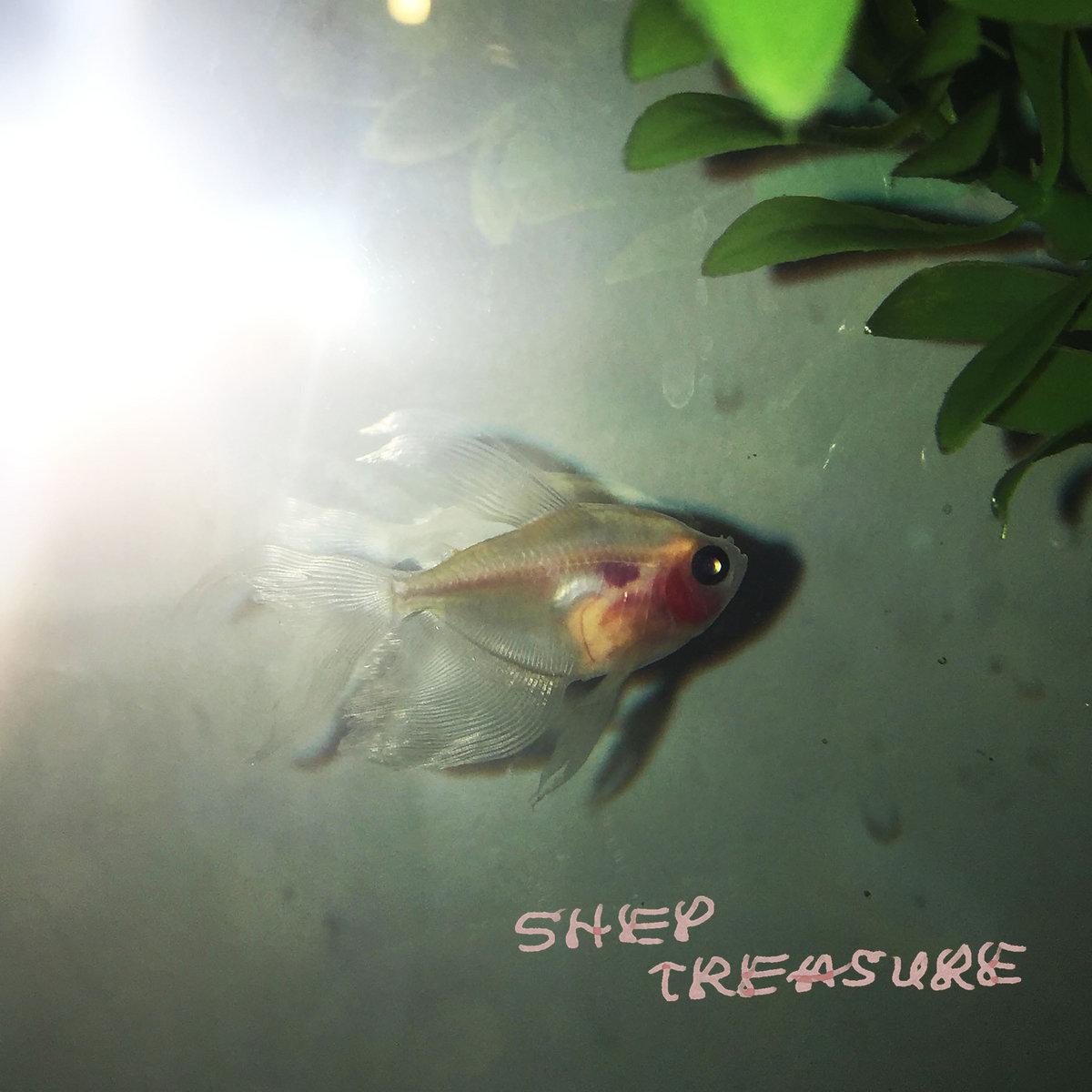 Shep Treasure – s/t