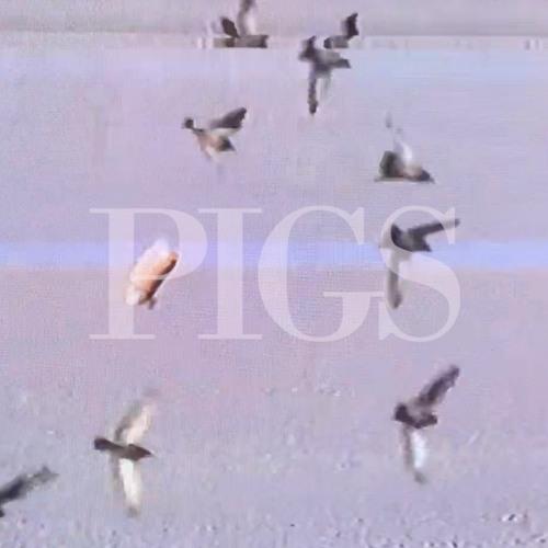 "T-Shirt Dream Party – ""Pigs"""