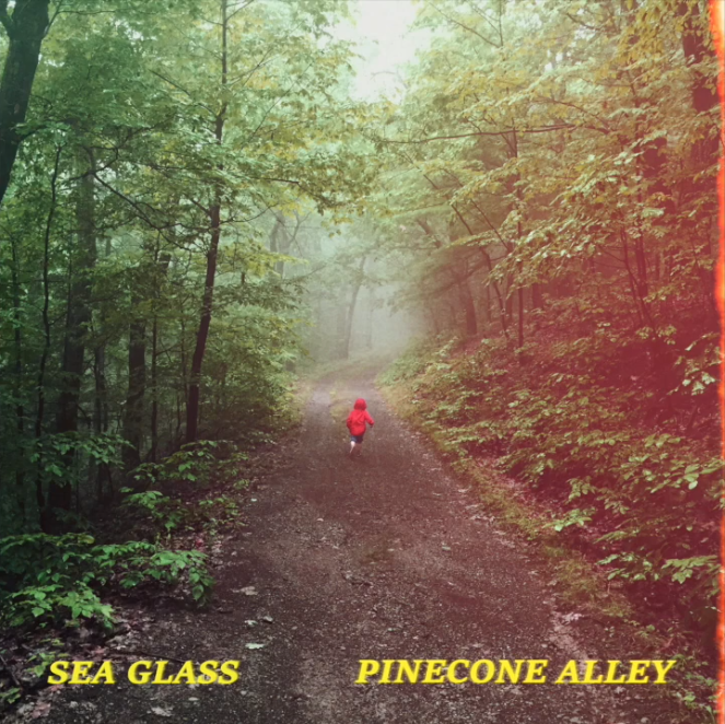 "Sea Glass x Sky Adler – ""Pinecone Alley"""
